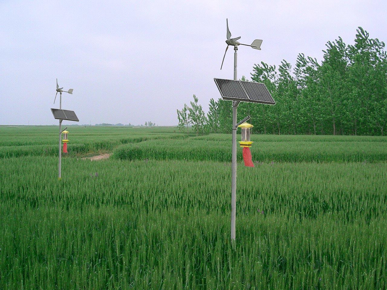 太阳能风能杀虫灯