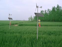 南宁太阳能风能杀虫灯